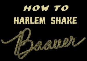 Harlem Shake by DJ Baauer
