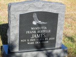 Frank B James