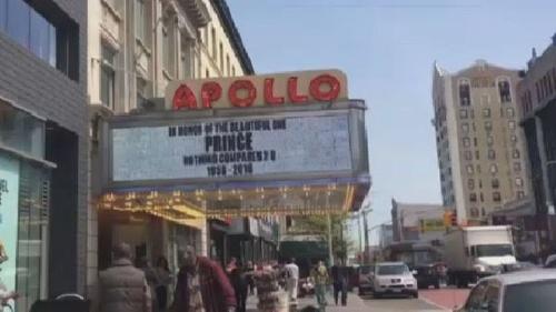 Prince - Apollo